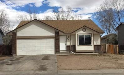 355 Briggs Place, Colorado Springs, CO 80911 - MLS#: 9579784
