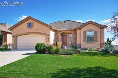2649 Crooked Vine Court, Colorado Springs, CO 80921 - MLS#: 9646299