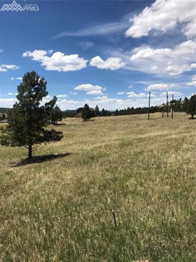 65 Apache Circle, Florissant, CO 80816 - MLS#: 9660530