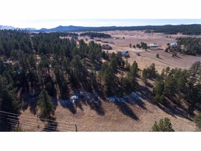 251 Homestead Lane, Florissant, CO 80816 - MLS#: 9677006