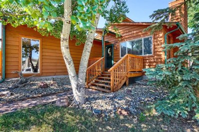 1127 Michael Lane, Woodland Park, CO 80863 - MLS#: 9724171