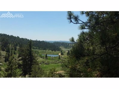 4583 W Highway 24 Highway, Florissant, CO 80816 - MLS#: 9753038