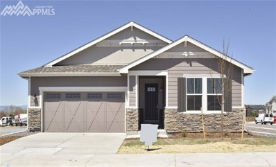 4290 Forever Circle, Castle Rock, CO 80109 - MLS#: 9776609