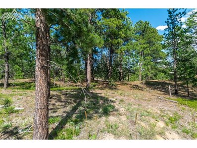 18885 Hilltop Pines Path, Monument, CO 80132 - MLS#: 9790422
