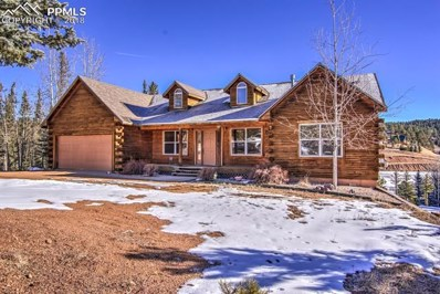 1660 Spring Valley Drive, Divide, CO 80814 - MLS#: 9835936