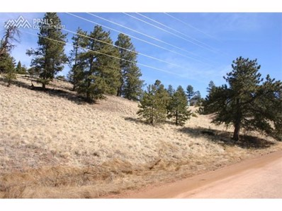 73 Arrowhead Road, Florissant, CO 80816 - MLS#: 9848620