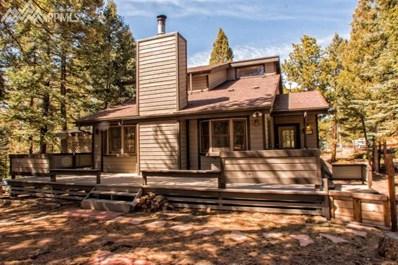 358 High View Circle, Woodland Park, CO 80863 - MLS#: 9892512