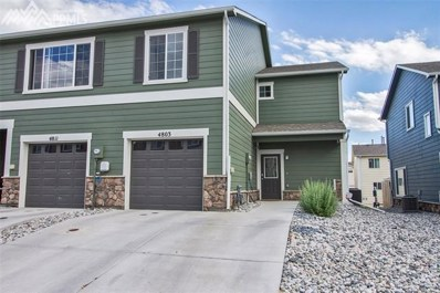 4803 Painted Sky View, Colorado Springs, CO 80916 - MLS#: 9980476