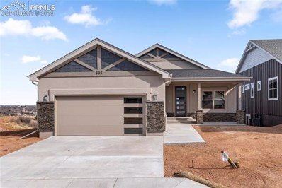 893 Uintah Bluffs Place, Colorado Springs, CO 80904 - MLS#: 9985207