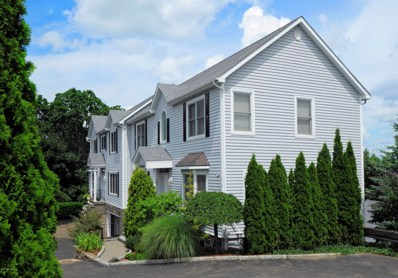 8 View Street UNIT 6, Greenwich, CT 06830 - #: 106919