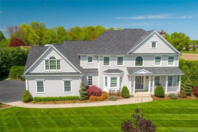 31 Lise Circle, Suffield, CT 06078 - MLS#: 170056325