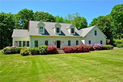 302 Hamburg Road, Lyme, CT 06371 - MLS#: 170069200