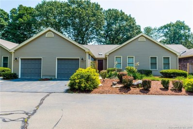 11 Coulter Street UNIT 14, Old Saybrook, CT 06475 - MLS#: 170106294