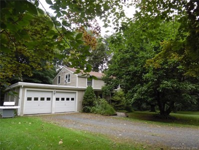 17 Clearview Drive, New Milford, CT 06776 - MLS#: 170127540