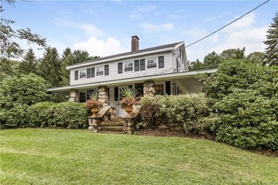169 Ball Pond Road, New Fairfield, CT 06812 - MLS#: 170129178