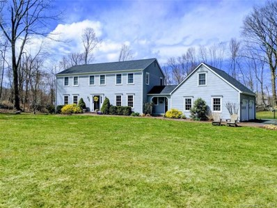 8 Old Woods Road, Brookfield, CT 06804 - #: 170164305