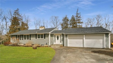 21 Wolfpits Road, Bethel, CT 06801 - MLS#: 170175707