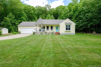 104 Daly Road, East Hampton, CT 06424 - MLS#: 170204549