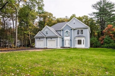 253 Hidden Lake Road, Haddam, CT 06441 - MLS#: G10206689