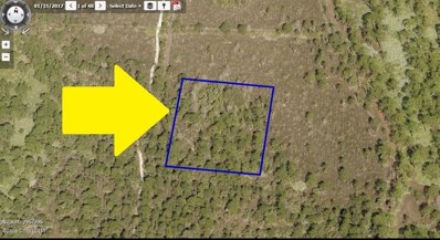 No Access - E Of Ponderosa Road, Grant Valkaria, FL 32950 - MLS#: 807020