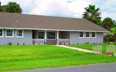 491 Americana Boulevard, Palm Bay, FL 32907 - MLS#: 819006
