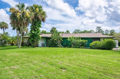 2869 Long Lake Drive, Titusville, FL 32780 - MLS#: 820734