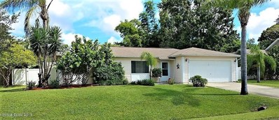 669 NW Altona Street, Palm Bay, FL 32907 - MLS#: 823399