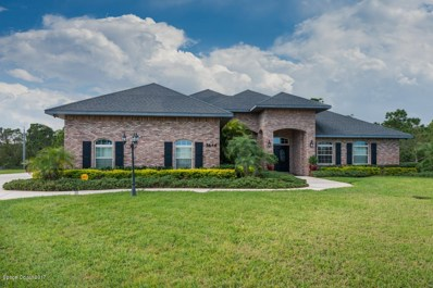 5646 Wood Stork Lane, Grant Valkaria, FL 32949 - MLS#: 828225