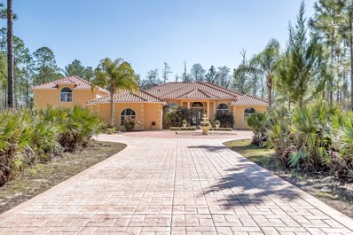 2165 Spruce Creek Circle, Port Orange, FL 32128 - MLS#: 1038885
