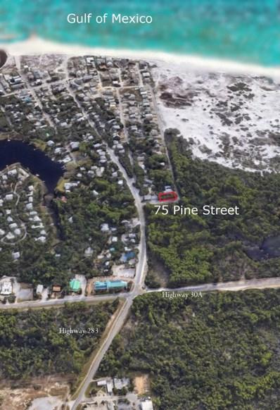 75 Pine Street, Santa Rosa Beach, FL 32459 - #: 821885