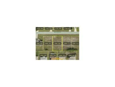316 16th ST, Cape Coral, FL 33990 - MLS#: 217065600