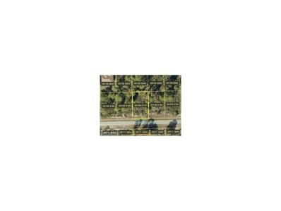 2612 50th W ST, Lehigh Acres, FL 33971 - MLS#: 217070828