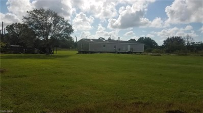 270 Mayoral ST, Clewiston, FL 33440 - #: 218056971