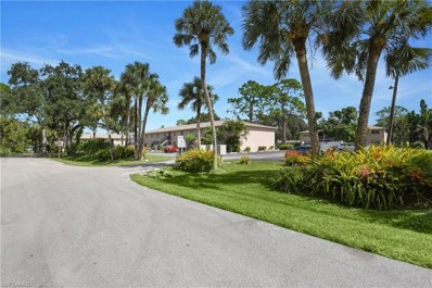 27249 Pullen AVE, Bonita Springs, FL 34135 - MLS#: 218067047