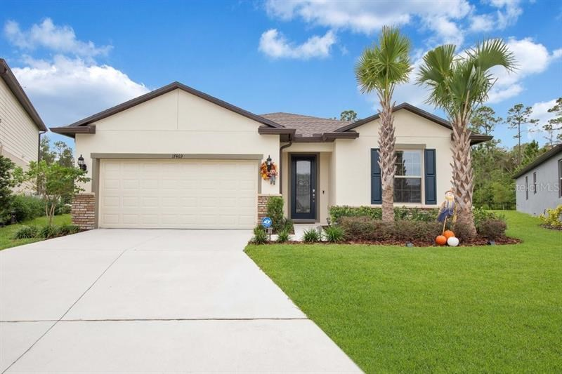 17469 BUTTERFLY PEA CT,