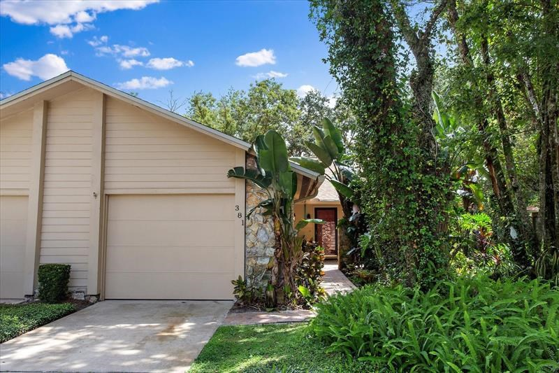 381 WINCHESTER PL,