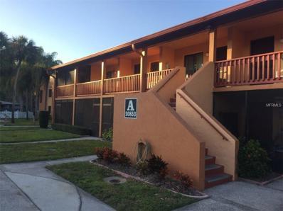 20853 Haulover Cove UNIT A12, Lutz, FL 33558 - MLS#: A4194141