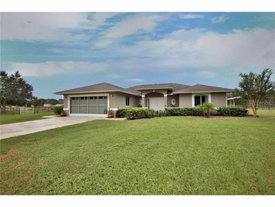 10863 SW Kissimmee Road, Arcadia, FL 34269 - MLS#: A4197595