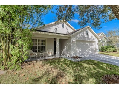 6817 Runner Oak Drive, Wesley Chapel, FL 33545 - MLS#: A4198385