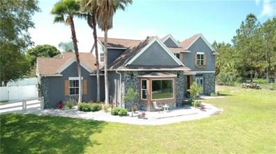 10710 Arrowhead Lake Court, Thonotosassa, FL 33592 - MLS#: A4206701