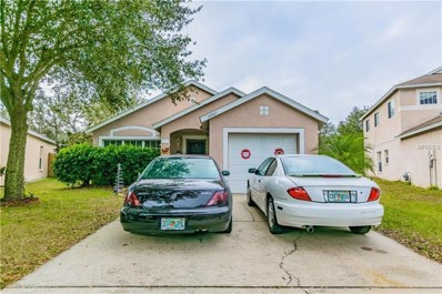 14905 Stag Woods Circle, Lutz, FL 33559 - MLS#: A4207899
