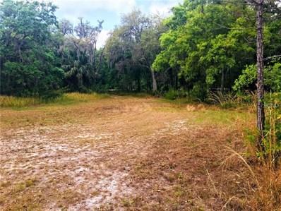 3206 Stagecoach Trail, Wimauma, FL 33598 - MLS#: A4214636