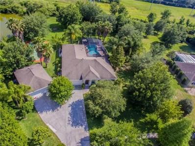17019 Patton Court, Lutz, FL 33559 - MLS#: A4401335