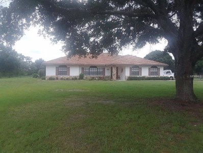 14555 Mossy Hammock Lane, Myakka City, FL 34251 - MLS#: A4404211