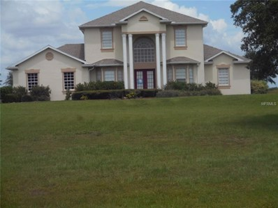 5410 Lake Paddock Circle, Parrish, FL 34219 - #: A4406588