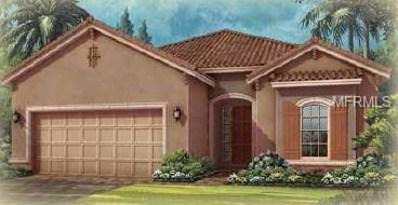20174 Umbria Hill Drive, Tampa, FL 33647 - #: A4409249