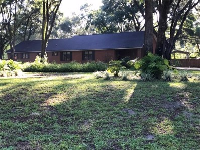 109 Polo Lane, Sanford, FL 32771 - MLS#: A4409305