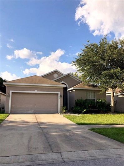 11028 Silver Dancer Drive, Riverview, FL 33579 - MLS#: A4411432