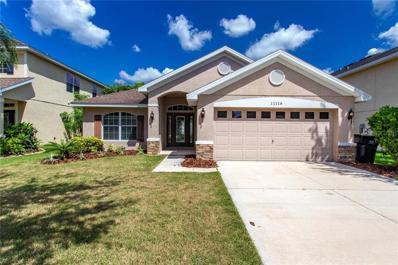 11116 Irish Moss Avenue, Riverview, FL 33569 - MLS#: A4414140