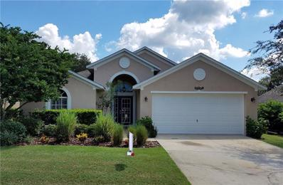 25208 Ironwedge Drive, Mount Plymouth, FL 32776 - MLS#: A4415241